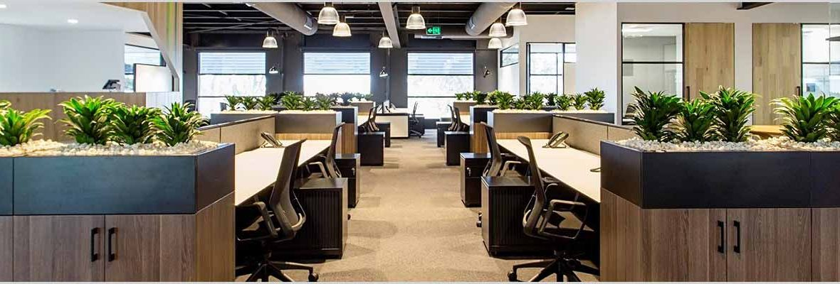 Bringing Nature Into Your Office Can Be Great From A Psychological Perspective Dr Chris Knight Exeter University And Psychologists 4